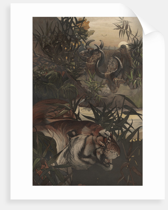 Shere Khan in the Jungle by Edward Julius Detmold