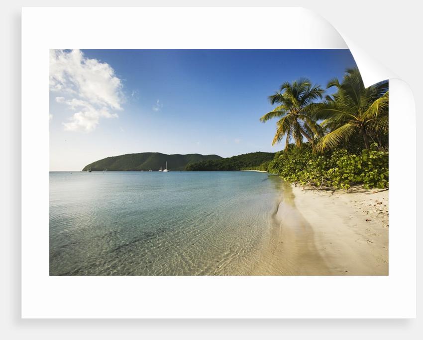 Maho Bay Beach by Corbis