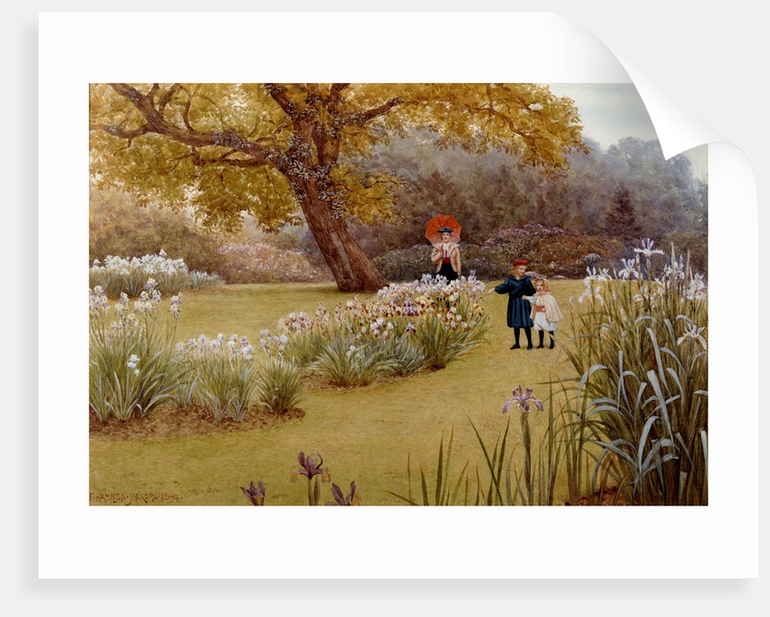 Walk In Garden Box: A Walk In The Garden Posters & Prints By Frederick