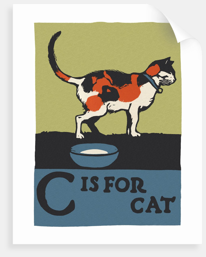 C is for cat by Corbis