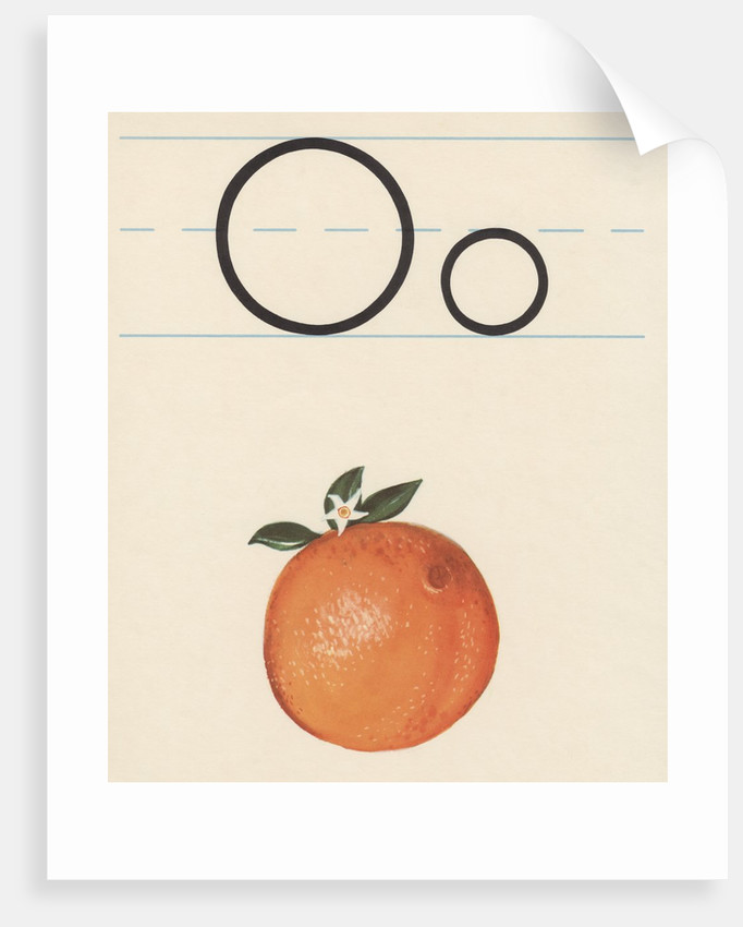 O is for orange by Corbis
