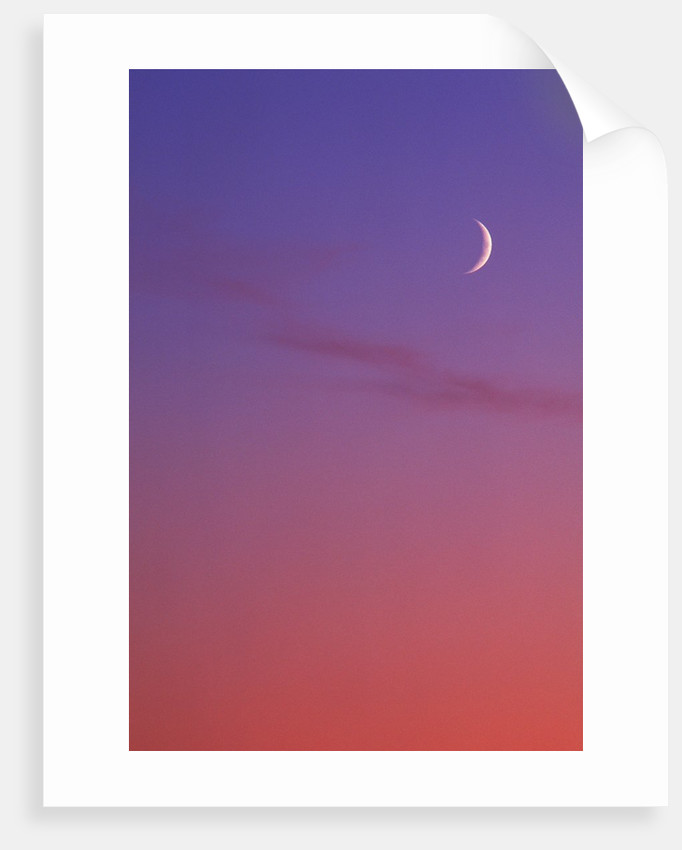 Evening Sky in Magenta with Crescent Moon - Background, Canada. by Corbis