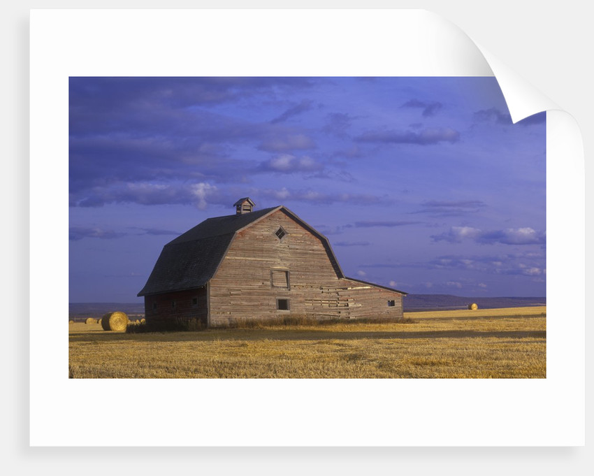Old Barn in the Peace River Country, Near Dawson Creek, British Columbia, Canada. by Corbis