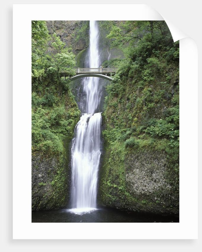 USA, Oregon, Columbia River Gorge Area, Scenic Waterfalls, Multonomah Falls by Corbis
