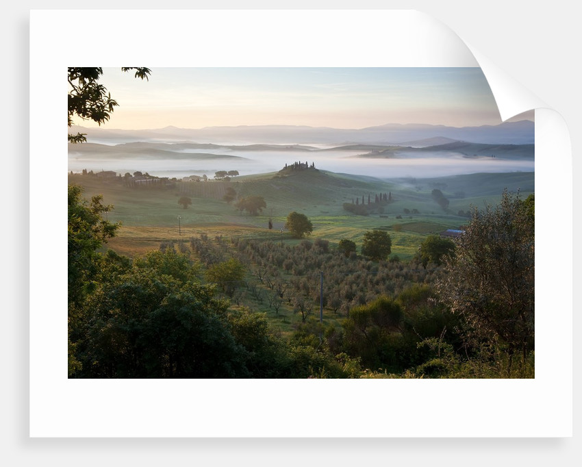 Ground fog at dawn in Val d'Orcia by Corbis