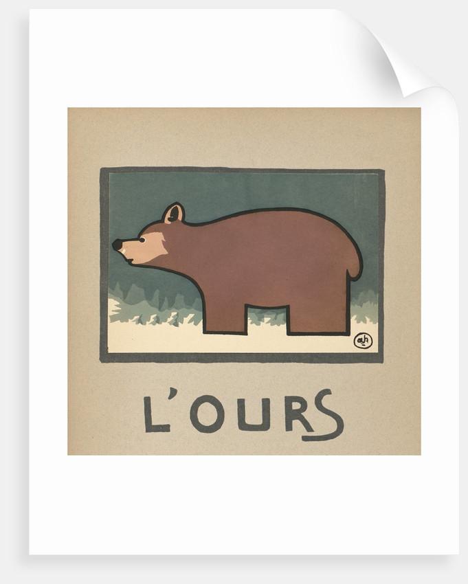 Bear by Corbis