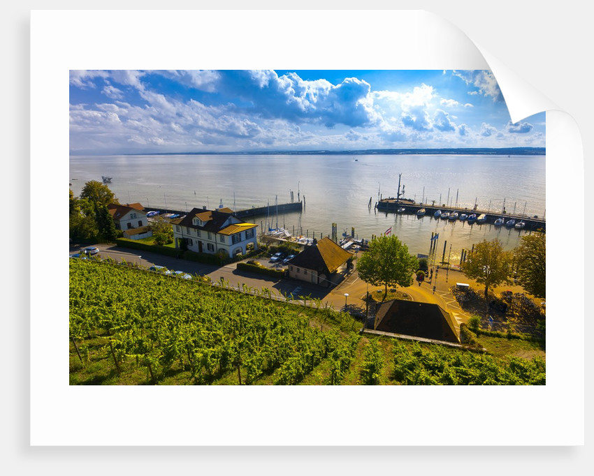 Vineyards, the medieval city of Meersburg on Lake Constance (Bodensee), Baden-W?rttemberg, Germany by Corbis