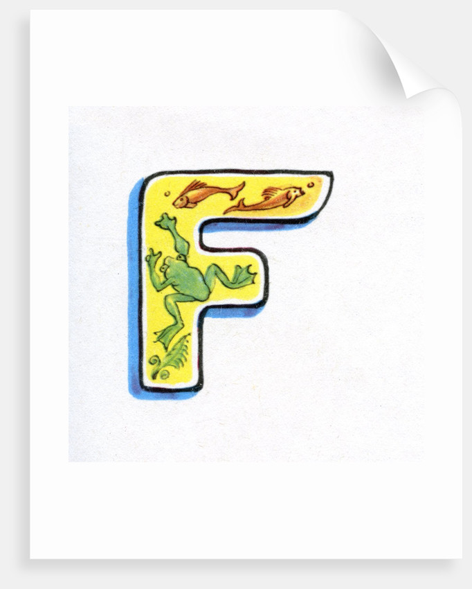 Letter F by Corbis