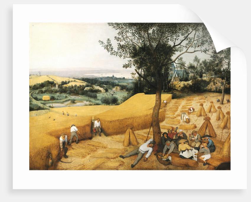 The Harvesters by Pieter Brueghel the Elder