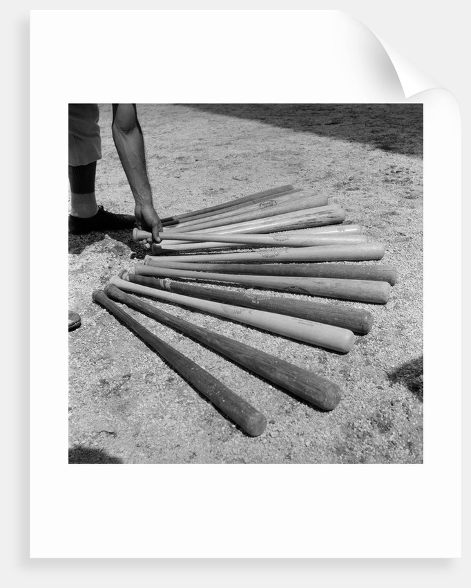 1950s baseball player selecting from a variety of bats by Corbis