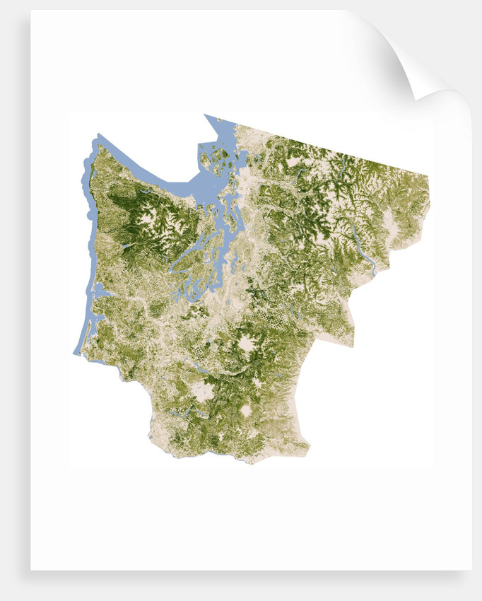 Satellite biomass map of western Washington State posters & prints ...
