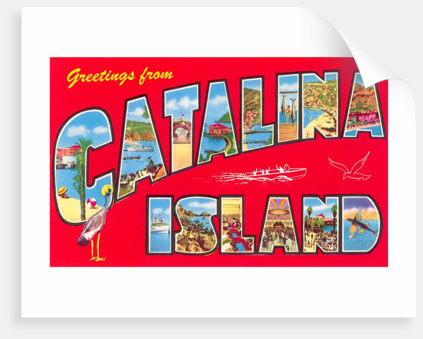 Greetings from Catalina Island, California by Corbis