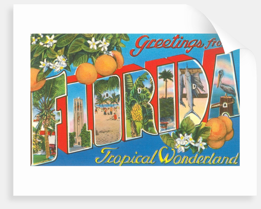 Greetings from Florida, Tropical Wonderland by Corbis