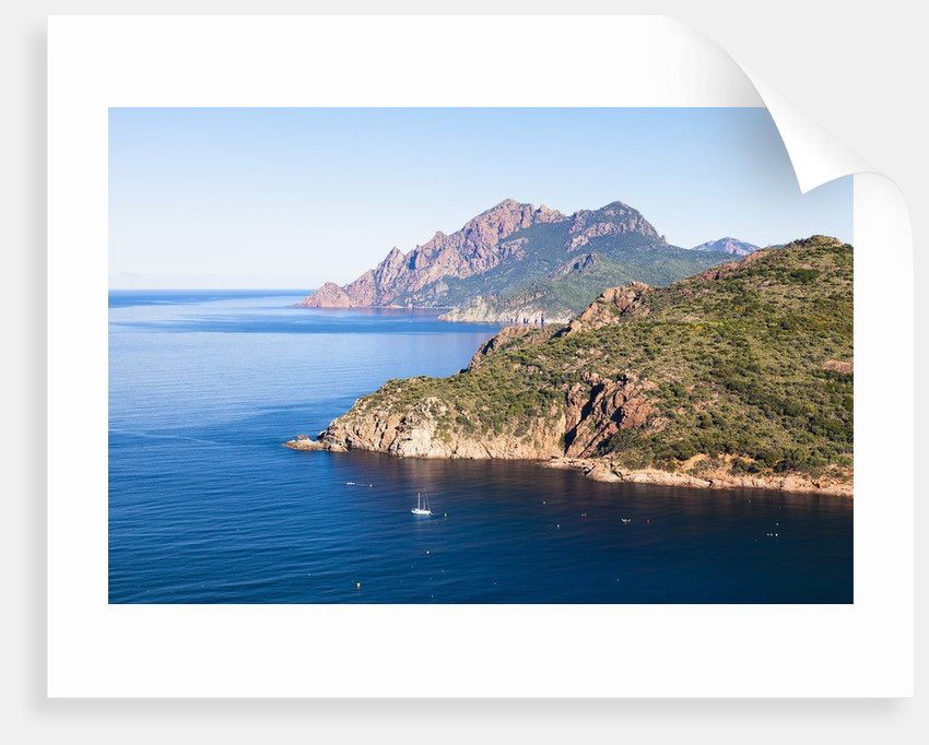 Rocky coast along the Gulf of Porto by Corbis
