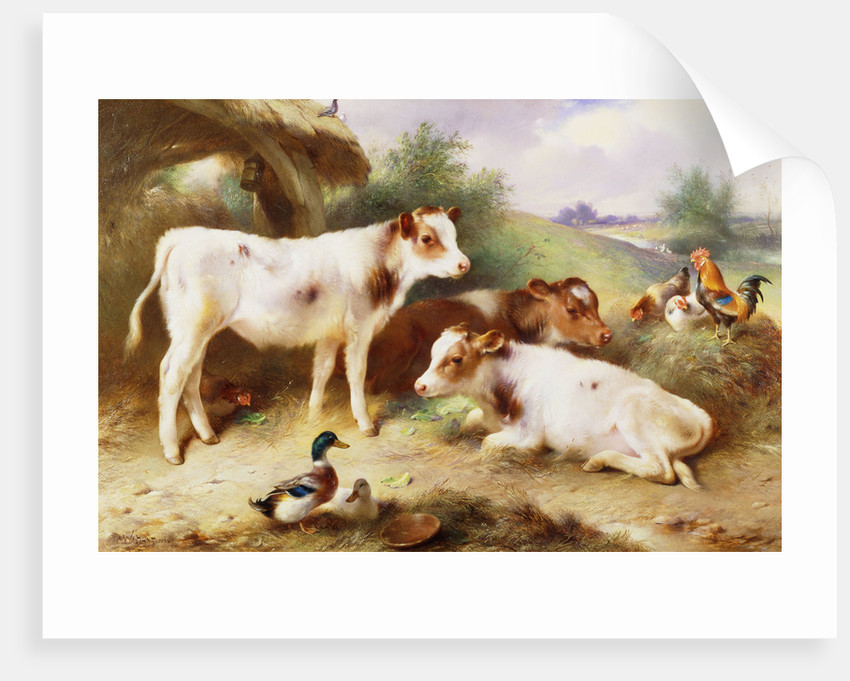 Calves and Poultry by a Byre by Walter Hunt