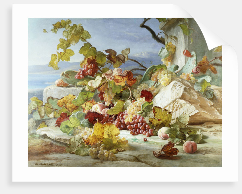 Peaches and Grapes in a Rocky Landscape by Theude Gronland