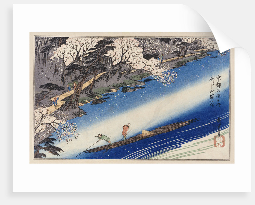 Cherry Blossoms at Arashiyama by Ando Hiroshige from the series 'Famous Places of Kyoto' by Corbis