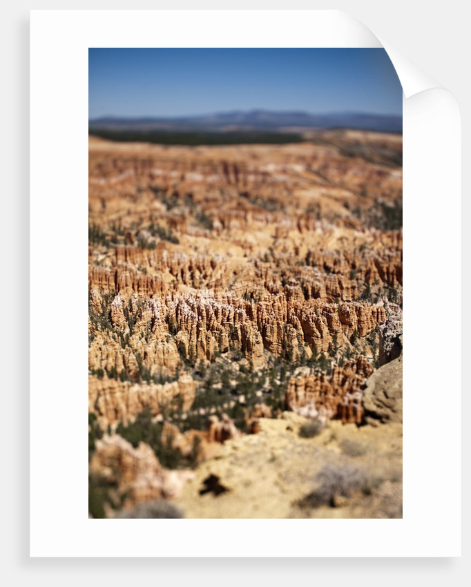 Bryce Canyon National Park, Utah by Corbis