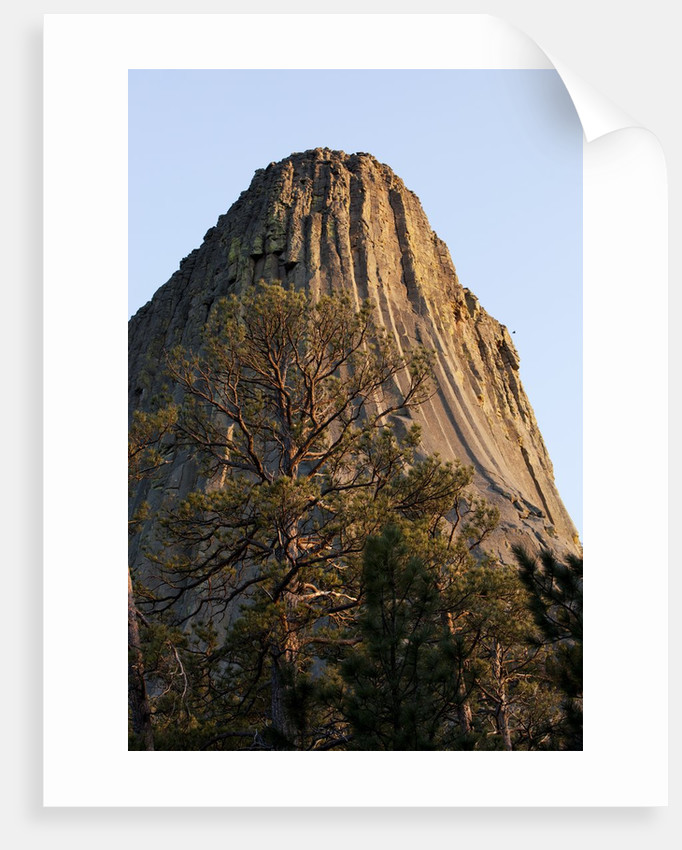 Devils Tower National Monument, Wyoming by Corbis