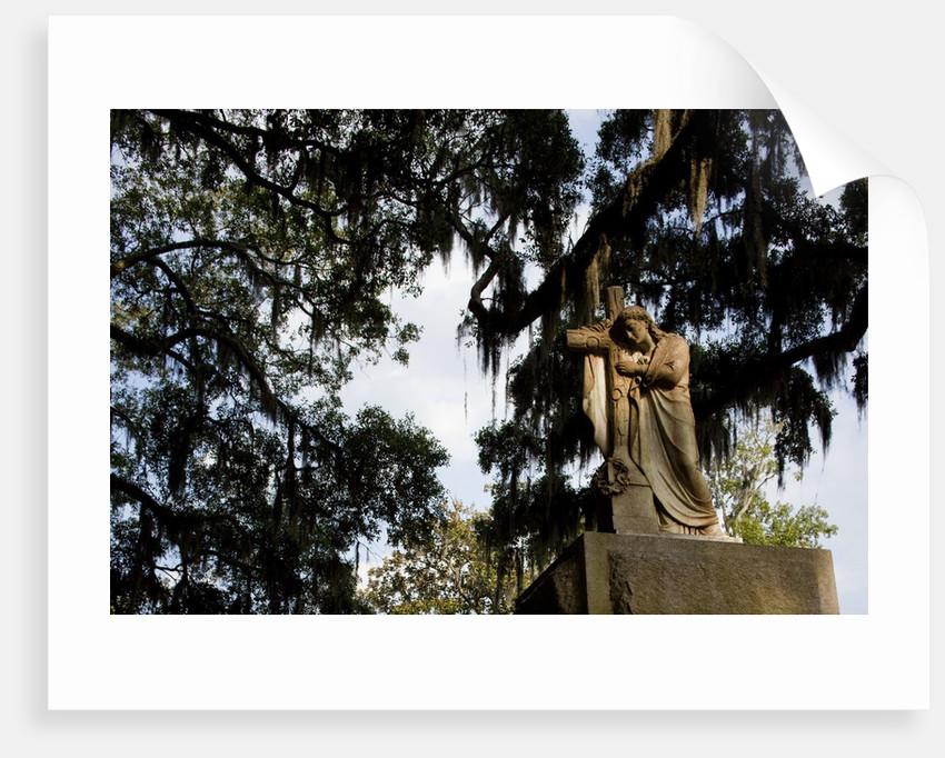 Bonaventure Cemetery, Savanna, Georgia by Corbis