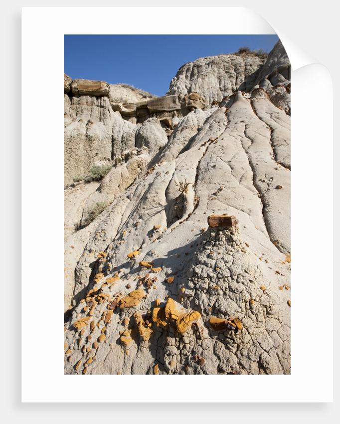 Badands, Theodore Roosevelt National Park, North Dakota by Corbis
