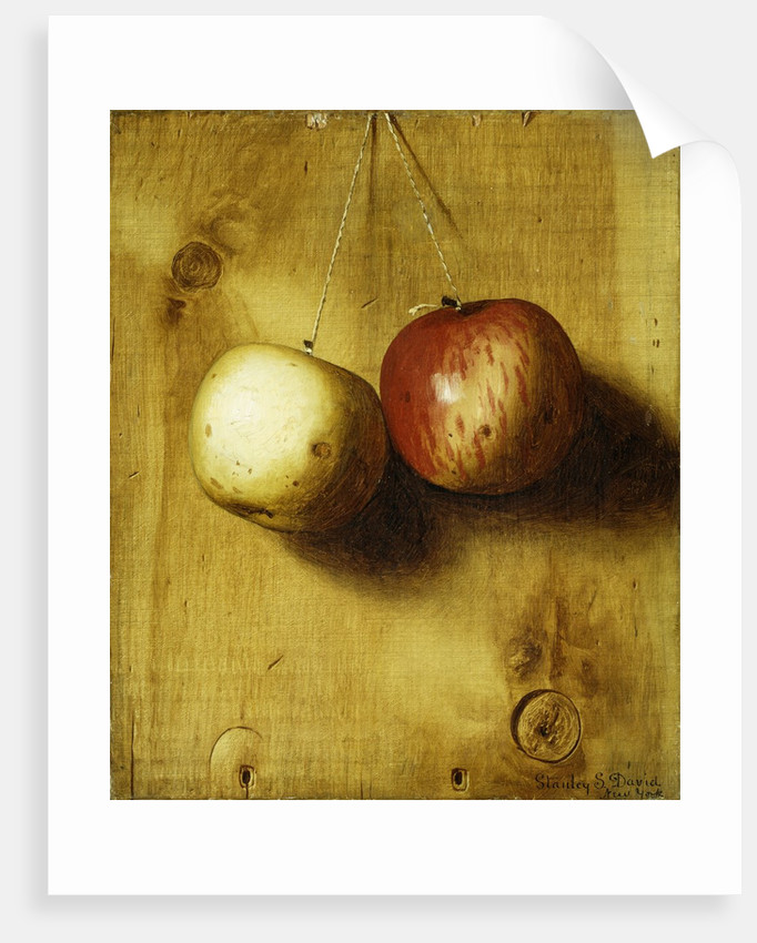 two apples posters prints by stanley s david