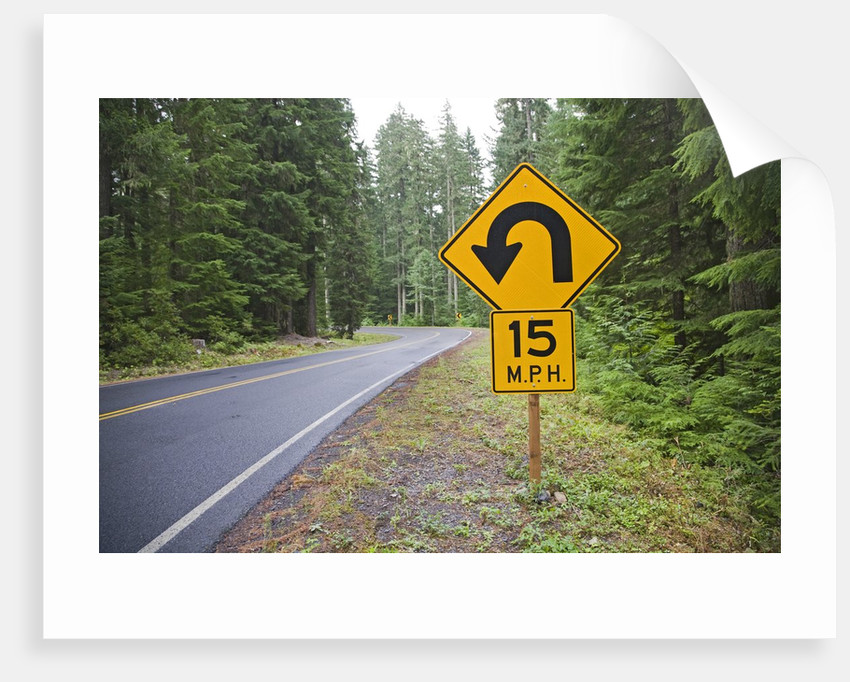 A signpost on a forest road warning of a U turn in the Cascade Mountains of Central Oregon by Corbis