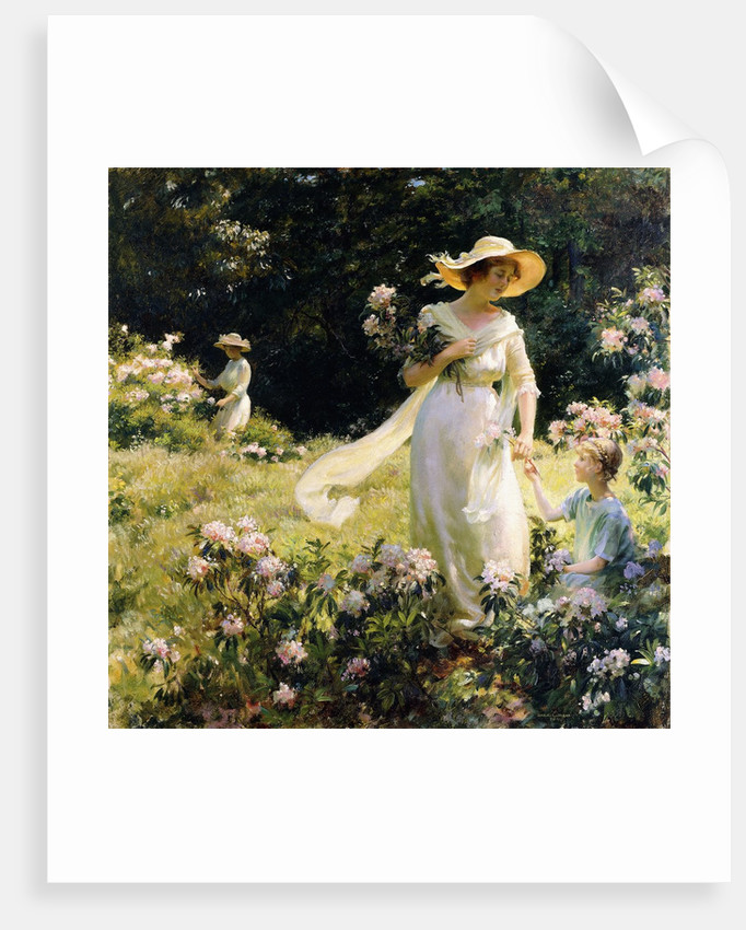 Among the Laurel Blossoms by Charles Courtney Curran