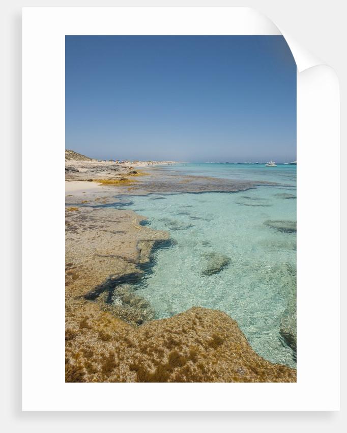 Balearic Islands - beach called 'platja de LLevant', parc des salines by Corbis