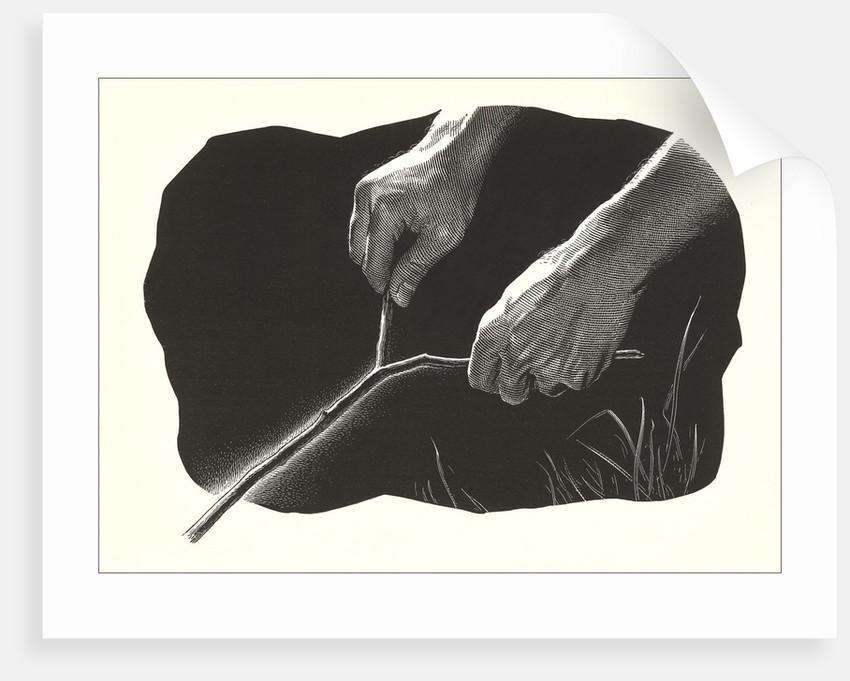 Dowsing Rod by Corbis