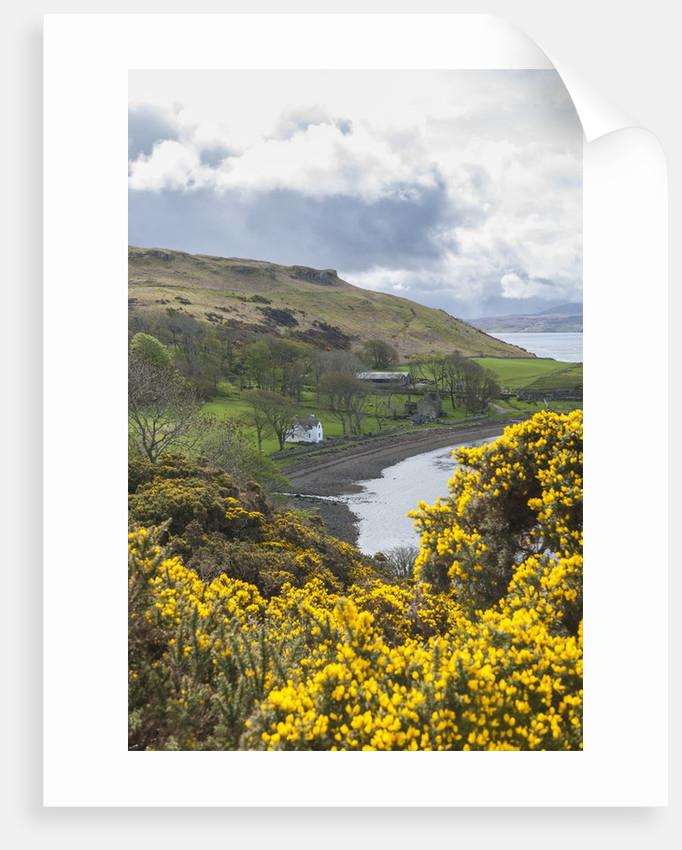 Landscape around Loch Harport by Corbis