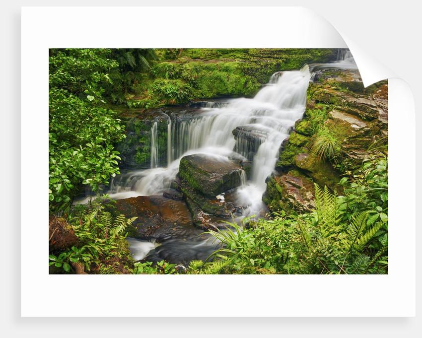 Waterfall McLean Falls by Corbis