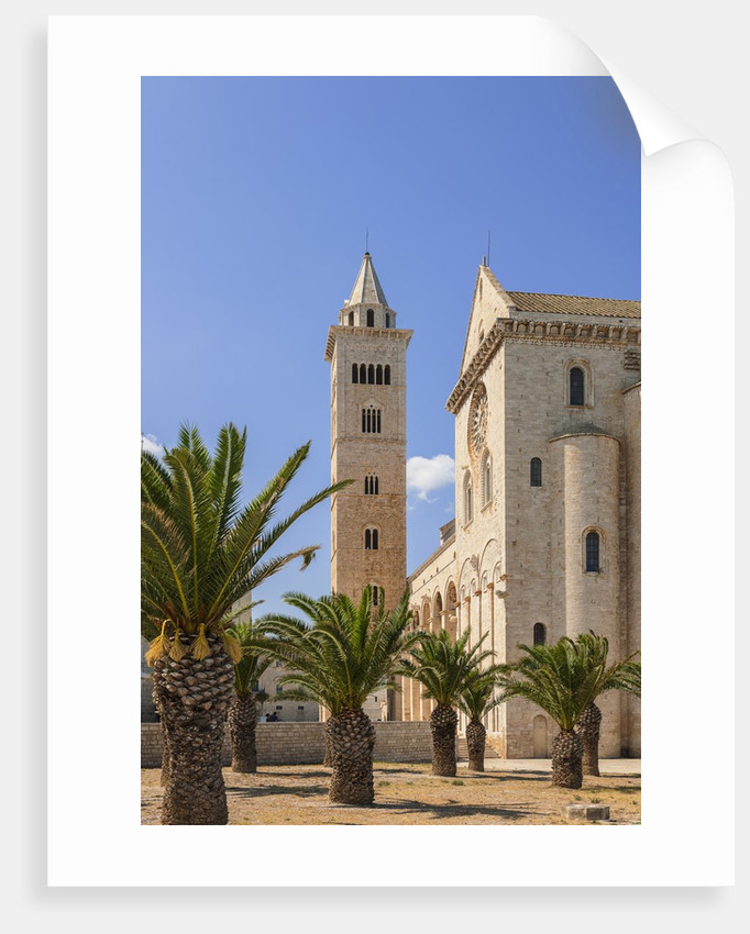 View of the Cathedral by Corbis