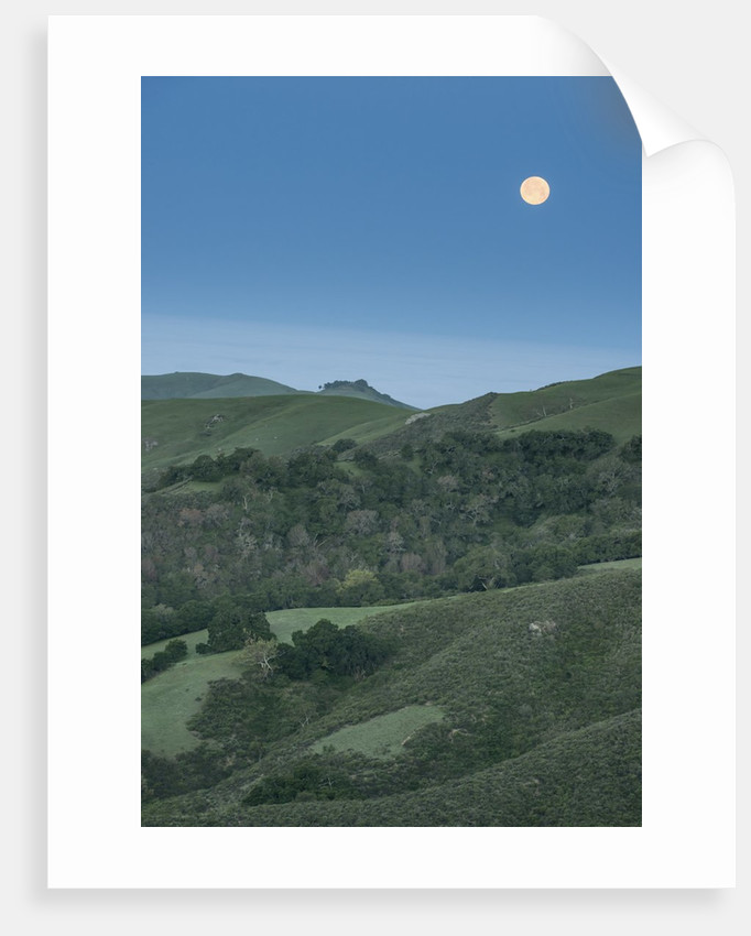 Full Moon Over the Central Coast by Corbis