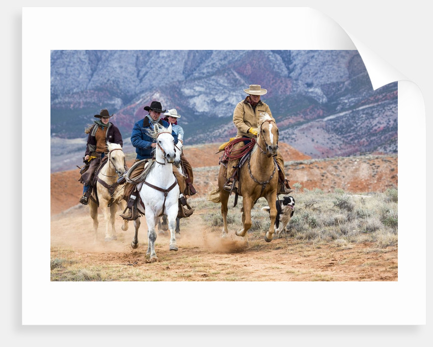 Cowgirl & Cowboy at Full Gallop by Corbis