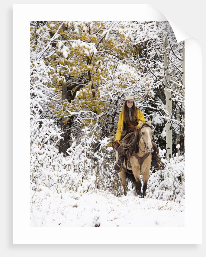 Cowgirl riding in Autumn Aspens with a fresh snowfall by Corbis