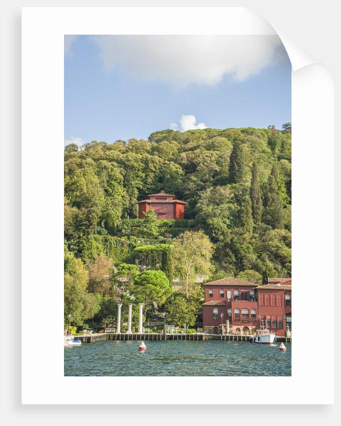 Beautiful houses along Bosporus by Corbis