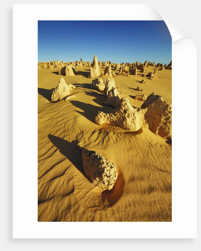 Erosion landscape Pinnacles by Corbis