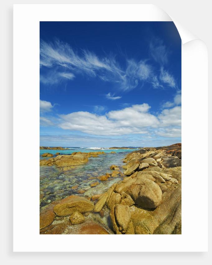 Coast landscape near elephant rocks posters prints by corbis for Landscape rock delivery near me