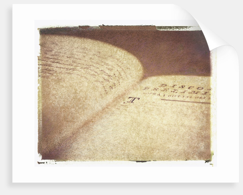 16th-Century Italian Book #2 by Jennifer Kennard