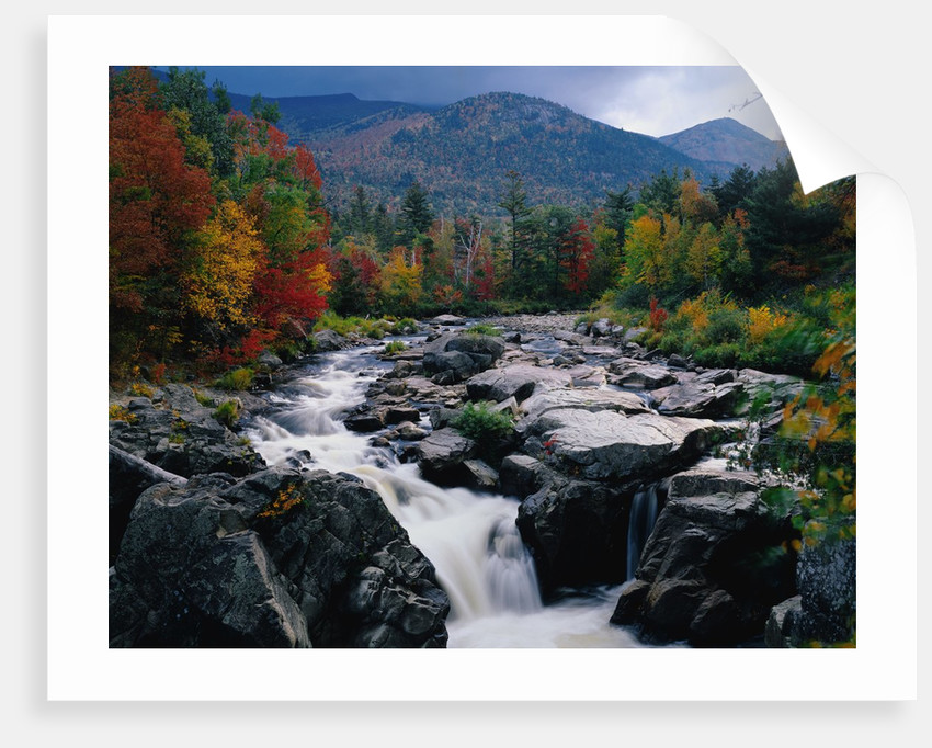 Cascades on Ausable River by Corbis