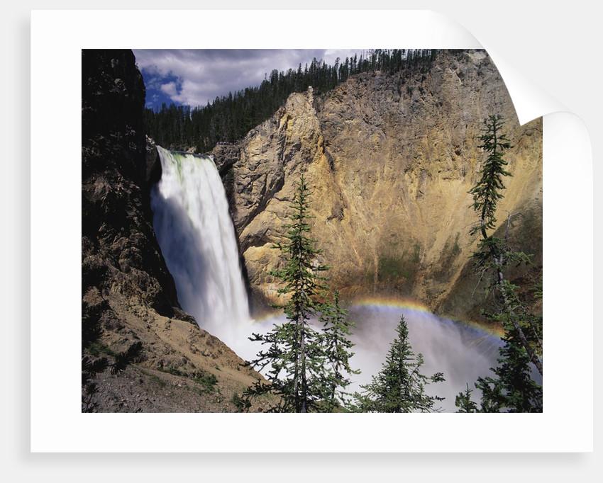 Rainbow at Lower Yellowstone Falls by Corbis