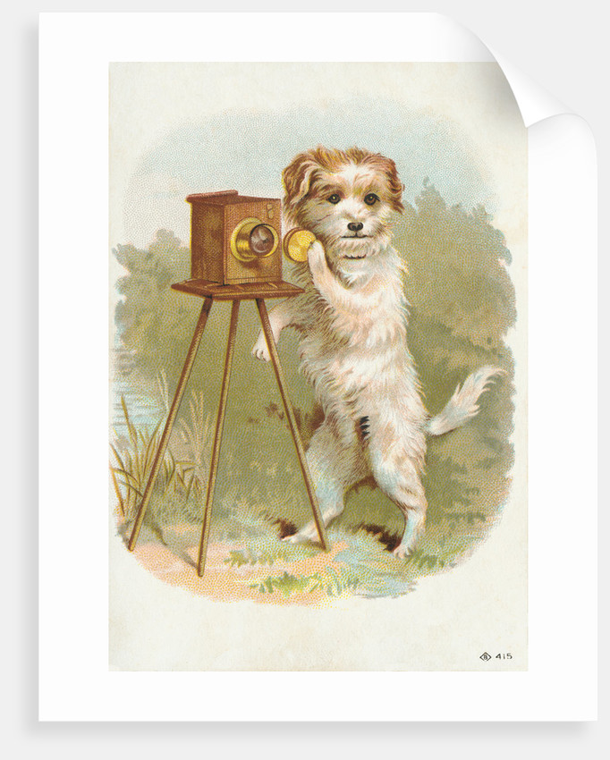 Trade Card of a Terrier Photographer by Corbis