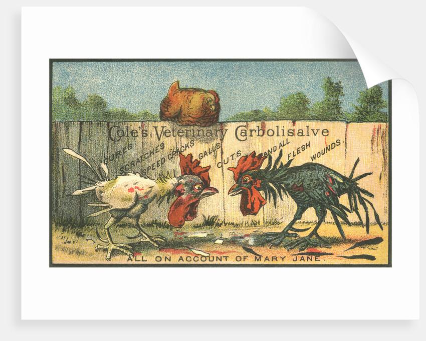 Cole's Veterinary Carbolisalve Trade Card by Corbis