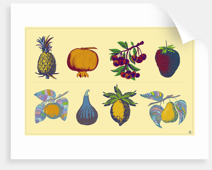 Fruits by Steve Collier