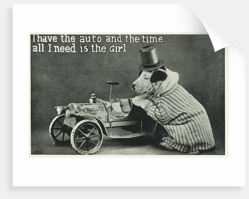 I Have the Auto and the Time Postcard with Dog by Corbis