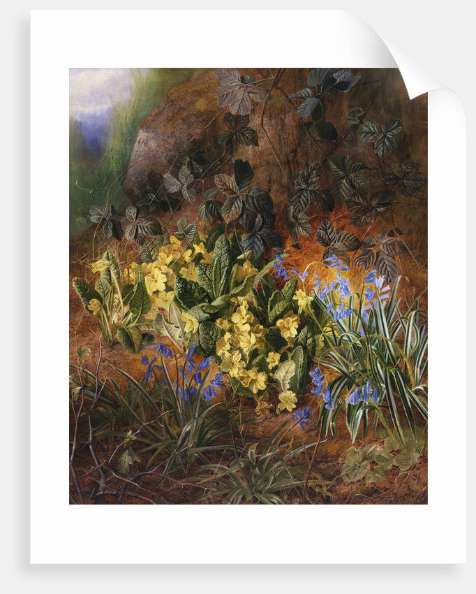 Spring Flowers on a Mossy Bank by Charles Archer