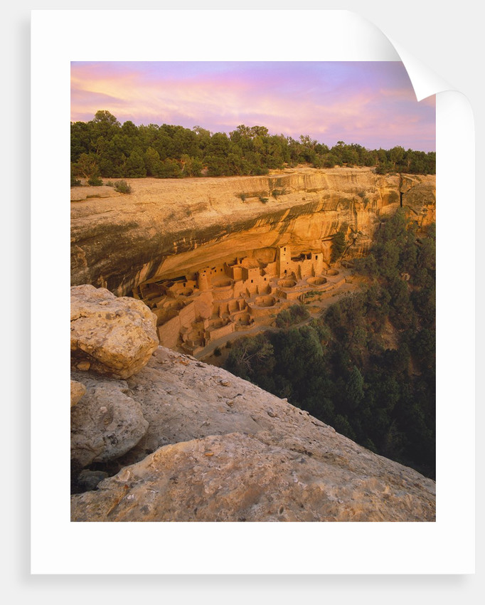 Cliff Palace Anasazi Cliff Dwelling at Mesa Verde National Park by Corbis