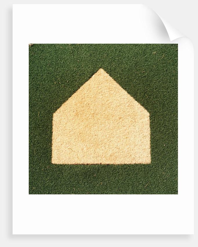 Artificial Turf Field posters \u0026 prints