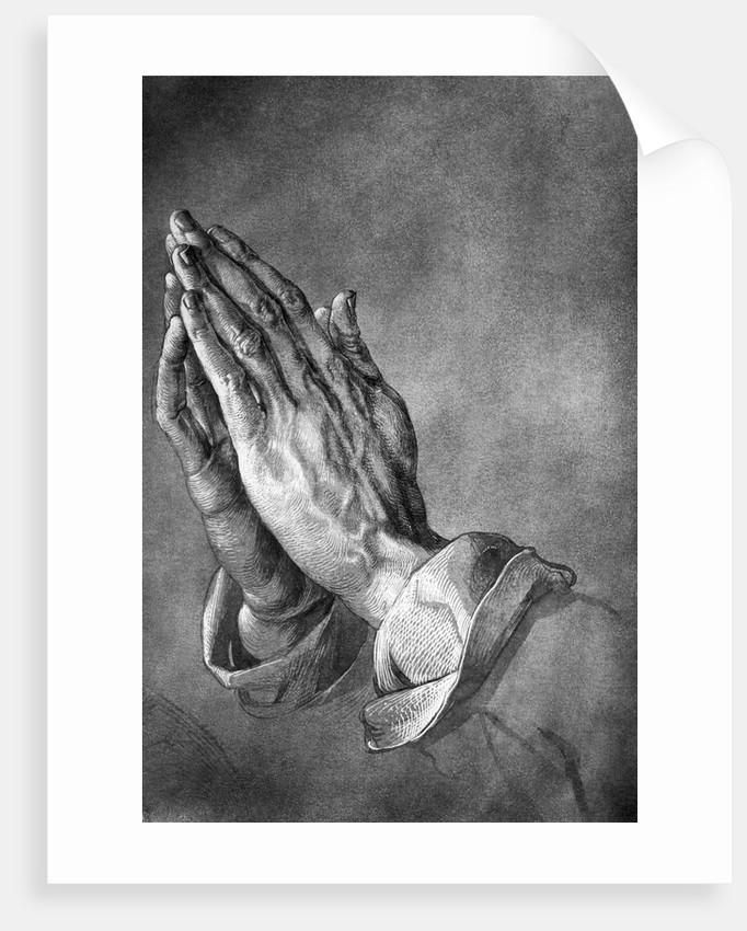 Study of Praying Hands by Albrecht Dürer